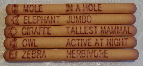 Yam Yam Sticks - Animal descriptions